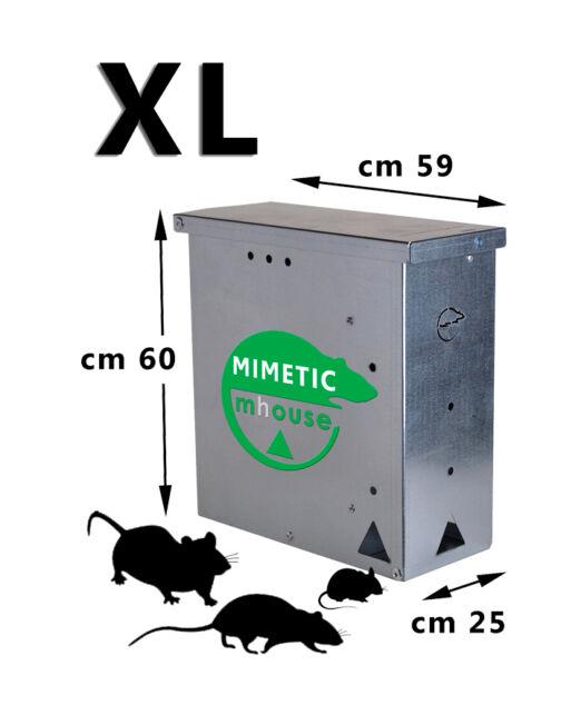 MM-XL